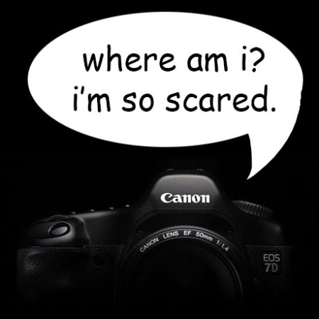 7D scared