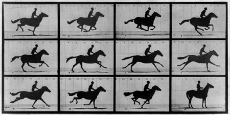 muybridge_galloping_horse